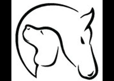 Akupressur Pferd und Hund