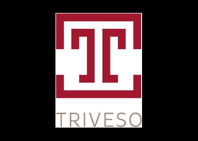 Triveso Zürich GmbH