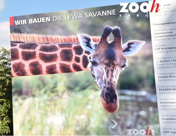 Besuch im Zoo Zürich